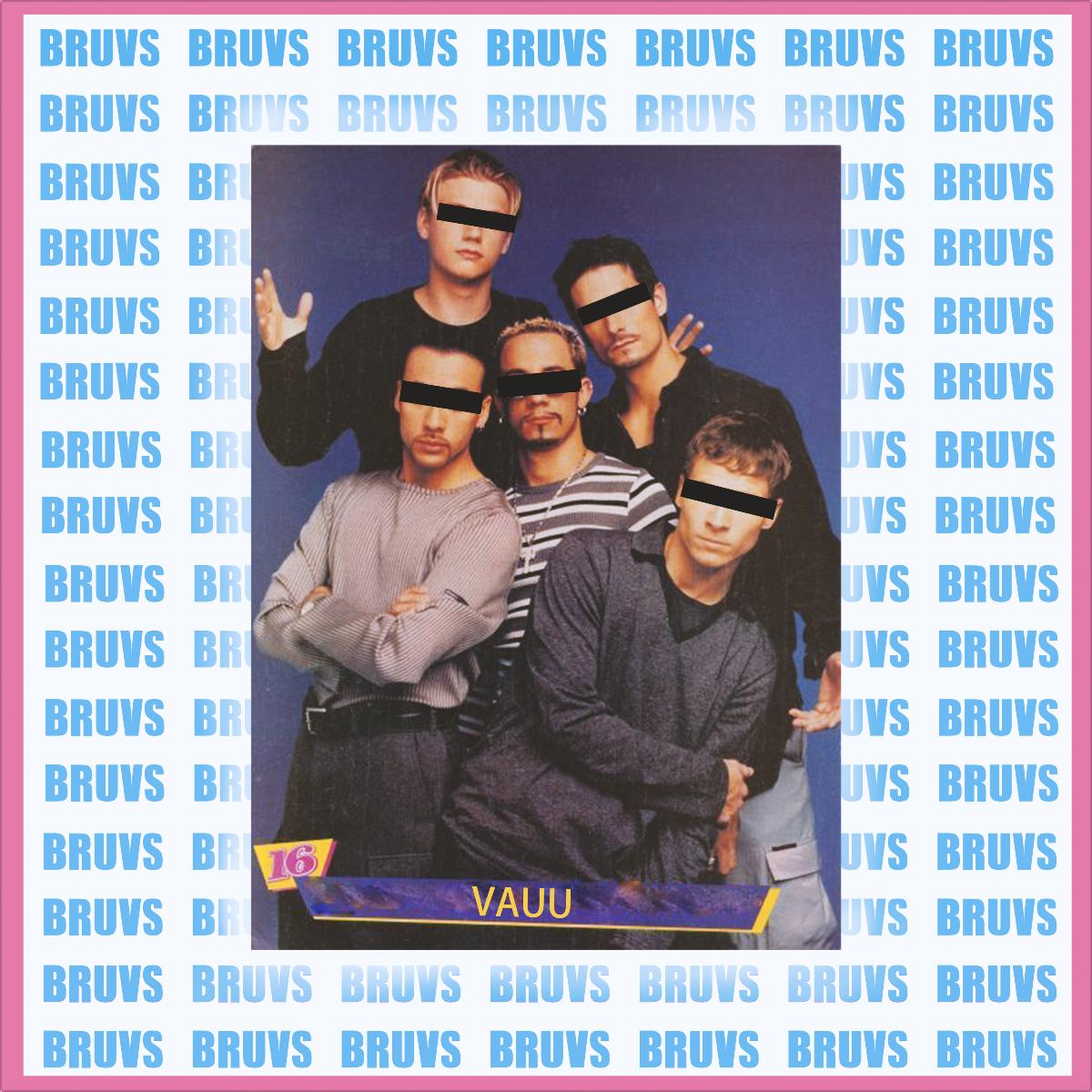 VAUU_Cover_Bruvs